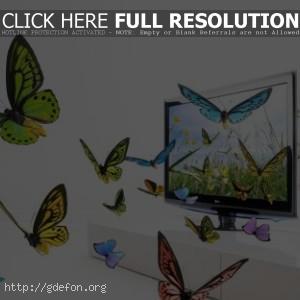 Бабочки в телевизоре