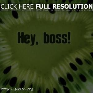 Киви с надписью Hey, boss!