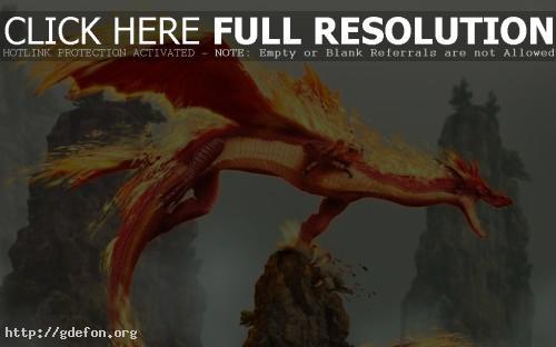 Обои Огненный дракон фото картики заставки