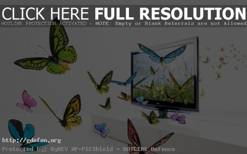 Обои Бабочки в телевизоре фото картики заставки