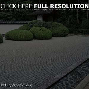 Япония, сад, кусты