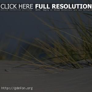 Песок, трава