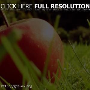 Яблоко, трава