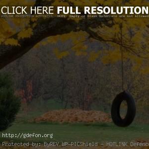 Осень, колесо, листья, поляна