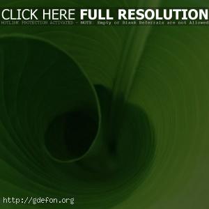 Лист в трубочку