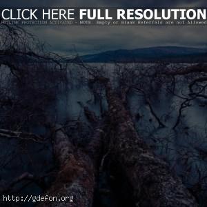 Пейзаж на озеро