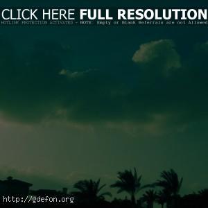 Облака, небо, пальмы, город