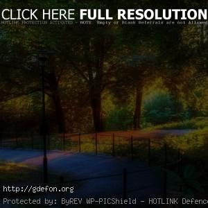 Парк, природа, хорошо