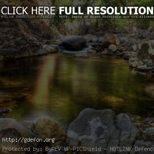 Ручей, лес, камни
