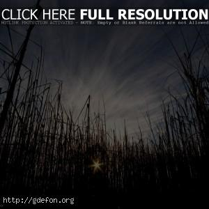 Трава, солнце, небо