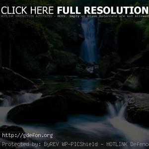 Водопад, камни, джунгли