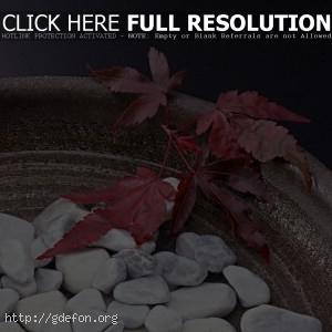 Ваза, камни, листья