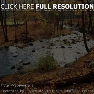 Осень, листья, река