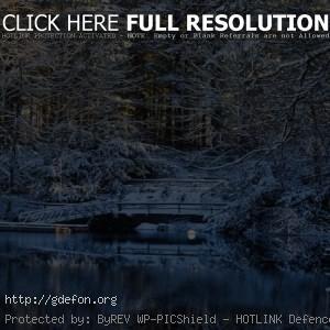 Снег, вода, деревья, озеро, мост