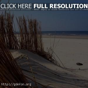 Песок, вода, пляж