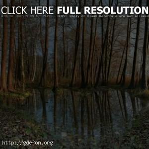 Природа, германия, деревья, вода, осень, листья