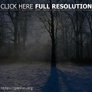 Зима, снег, деревья, лучи