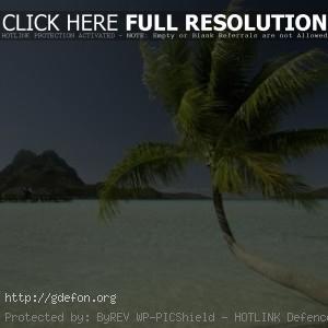 Пальма, море, остров, дома