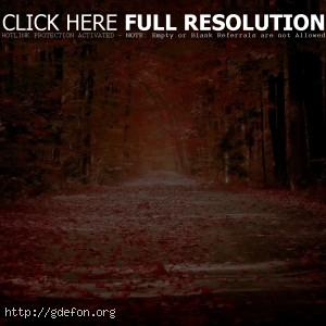 Осень, листья, листопад, дорога, аллея