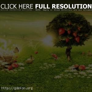 Зеленый, дерево, клубника, грибы, волшебство