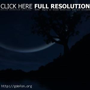 Дерево, озеро, луна, человек