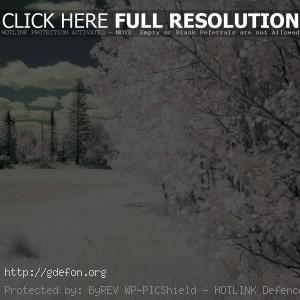 Белоснежная зима