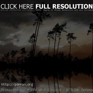 Ночь, река, деревья