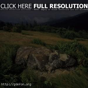 Камень, трава, буря, склон