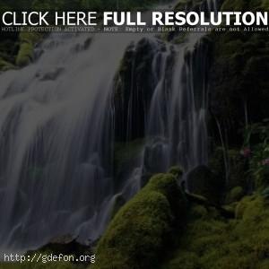 Водопад с рододендроном