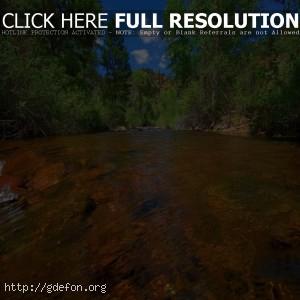 Река, поток, деревья