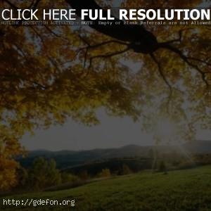 Лучи октябрьского солнца