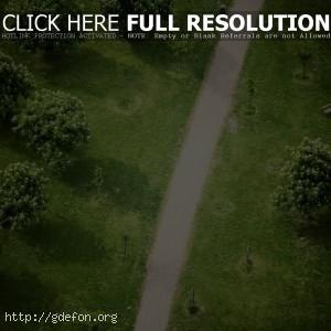 дорожка, деревья, парк
