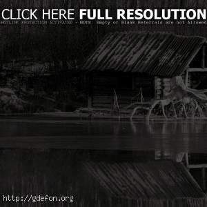 Черно-белое, река, лес, причал