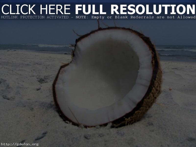 Обои кокос, песок, пляж фото картики заставки