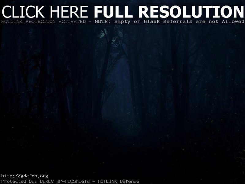 Обои Ночь, свет, лес, луна фото картики заставки
