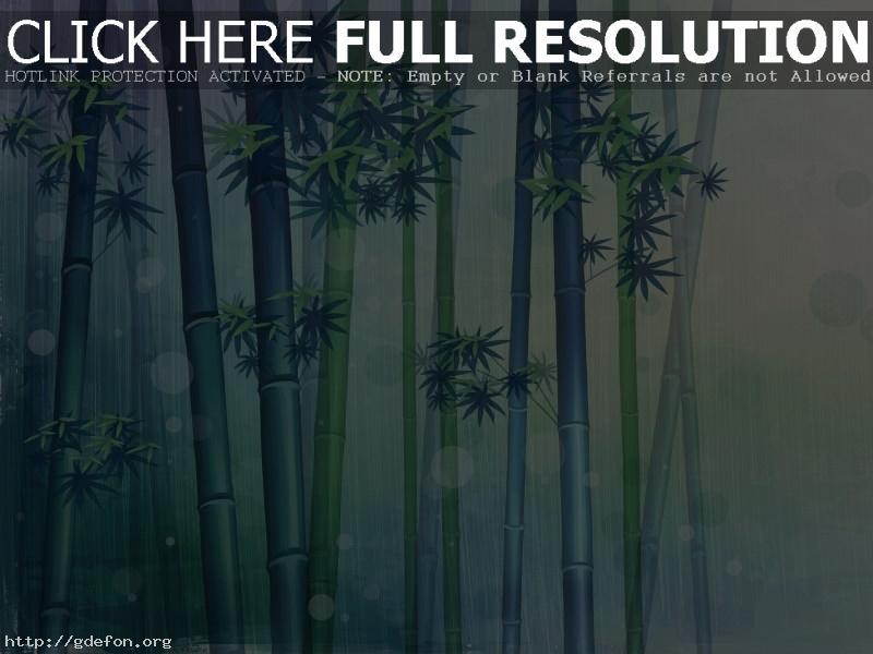 Обои Бамбук, свежесть, зеленое фото картики заставки