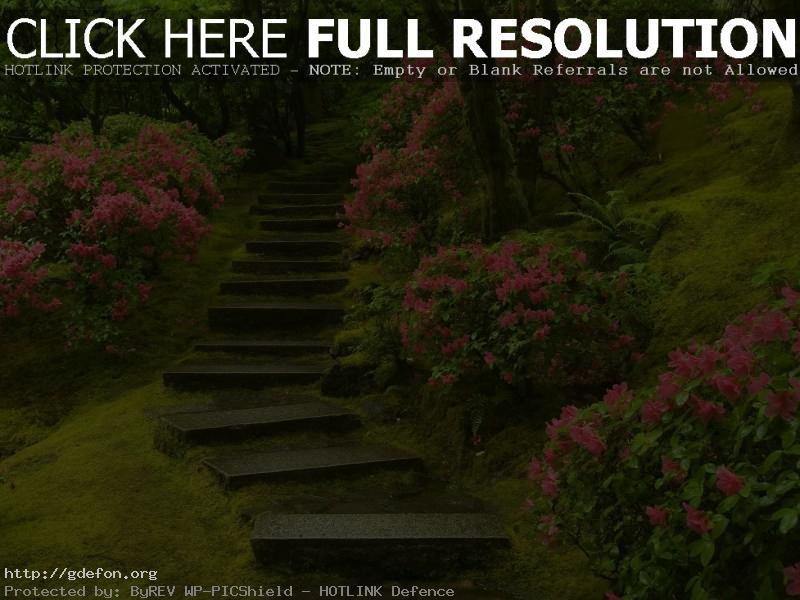 Обои Японский сад, лестница, цветы фото картики заставки
