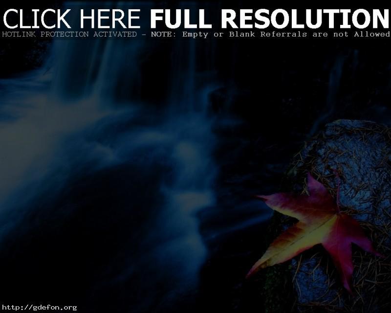 Обои Лист, водопад фото картики заставки