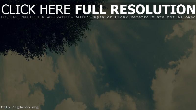 Обои Небо, дерево, свет, облака фото картики заставки