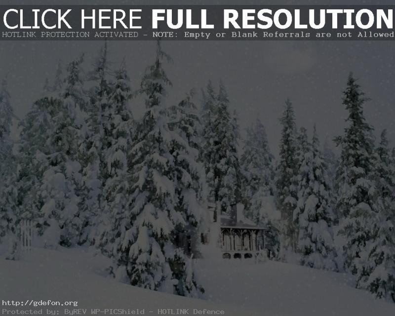 Обои Заснеженный домик в лесу фото картики заставки