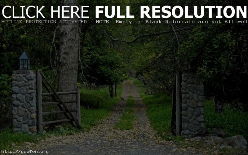 Обои Лес, ворота, дорога фото картики заставки
