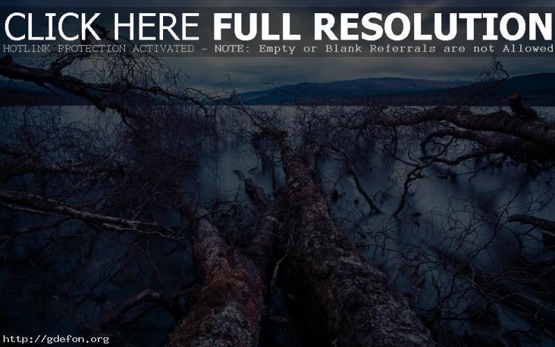 Обои Пейзаж на озеро фото картики заставки