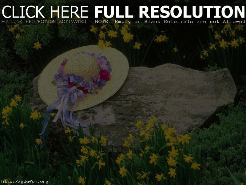 Обои шляпа, камень, цветы фото картики заставки