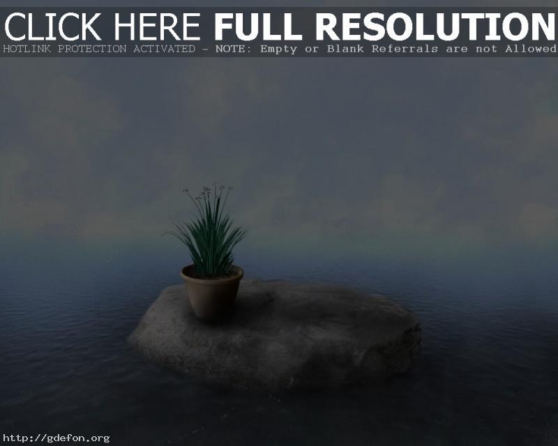 Обои Камень, вода, облака, растение, горшок фото картики заставки