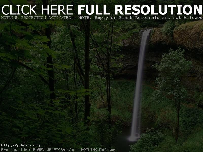 Обои Водопад в лесу фото картики заставки
