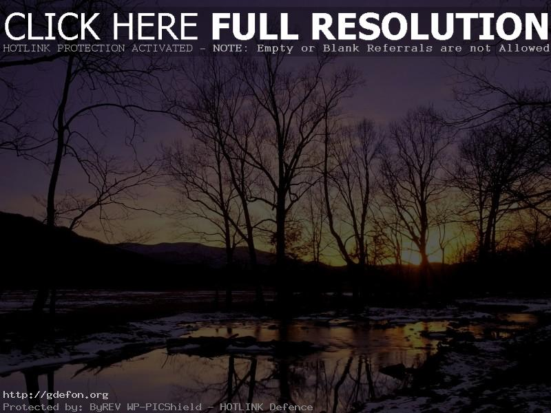 Обои Деревья, зима, снег, закат фото картики заставки