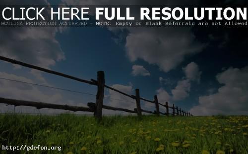 Обои Деревянный забор, одуванчики и облачное небо фото картики заставки