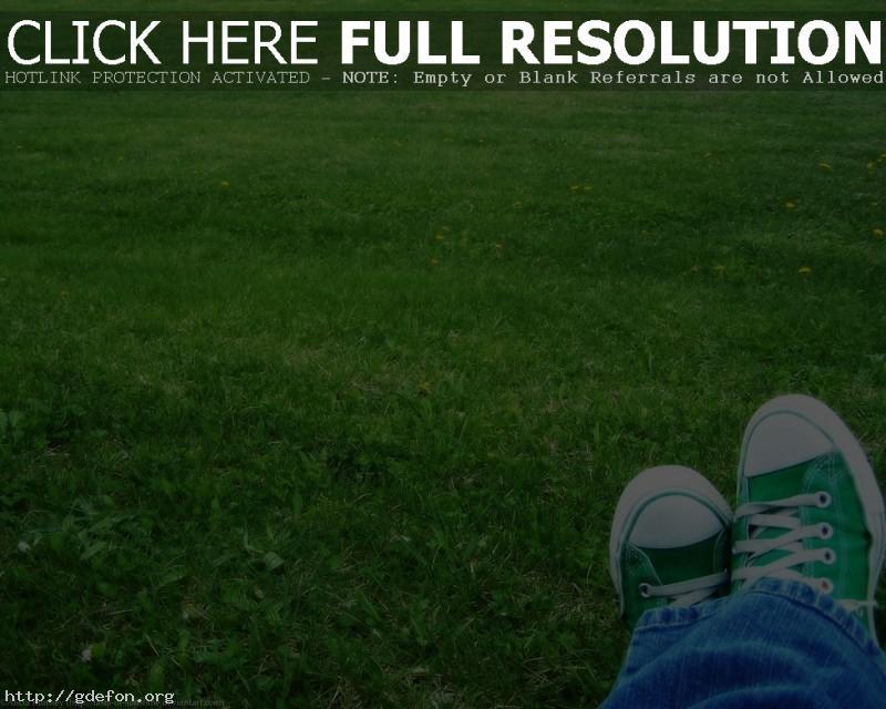 Обои Зеленый, кеды, трава фото картики заставки