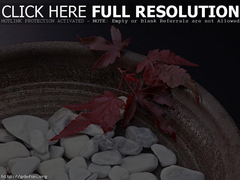 Обои Ваза, камни, листья фото картики заставки