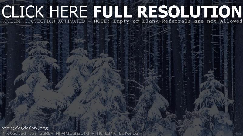 Скачать обои новый год лес снег зима